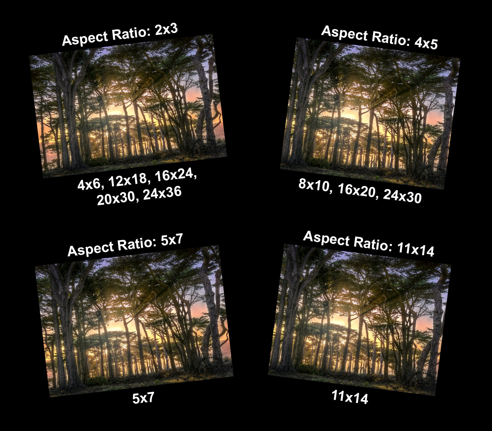 Image showing print sizes and aspect ratios available when printing the photograph.